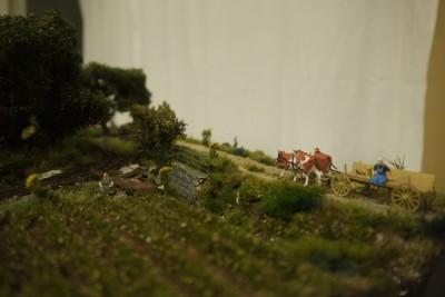 Gipswerk Feldbahn 5
