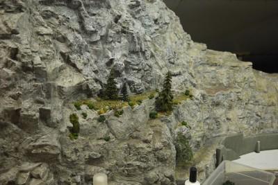 Pflanzen Felswand H0