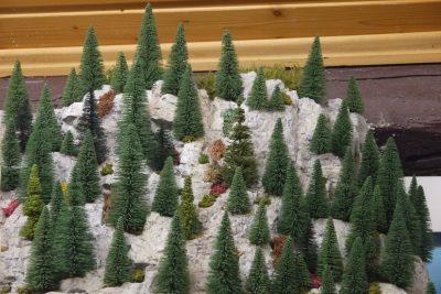 Bäume Felswand